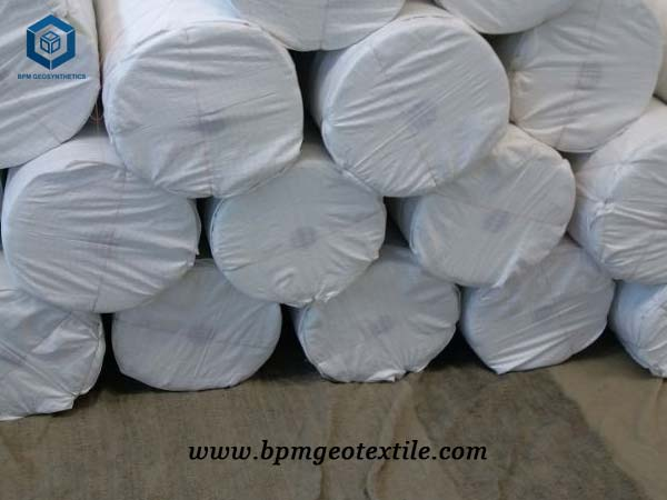 White Geotextile Fabric for Construction in USA