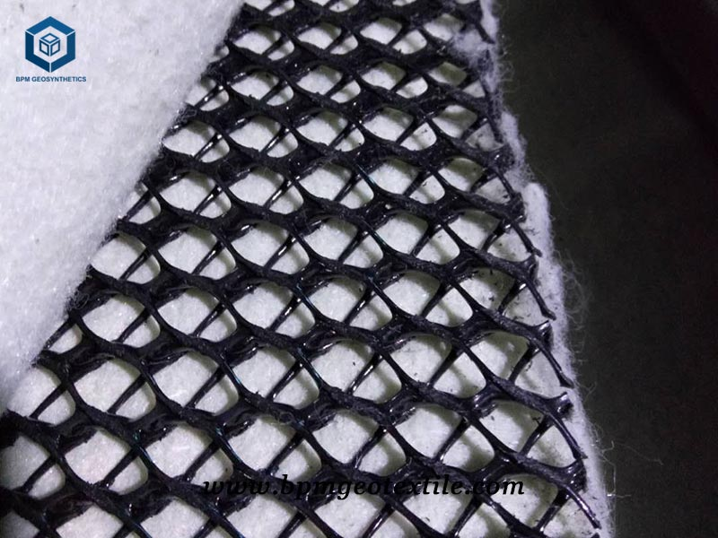 BPM Geonet Geotextile Used for Landfill Project in Thailand